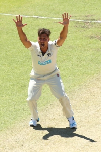 Marcus Stoinis appeals